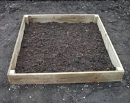 low cost starter kit raised timber bed