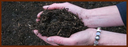 eco-friendly compost from recycled garden cuttings