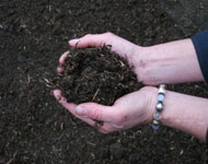 eco friendly peat-free organic compost