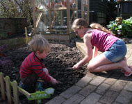 preparing the soil to plant their vegetables